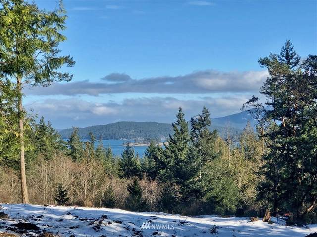 0 Bramblewood Lane, San Juan Island, WA 98250 (#1737987) :: The Original Penny Team