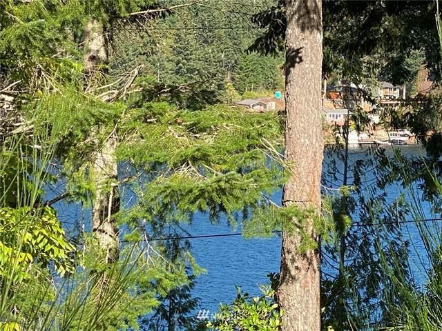 1132 Summit Lake Shore Road, Olympia, WA 98502 (#1738437) :: Better Properties Real Estate