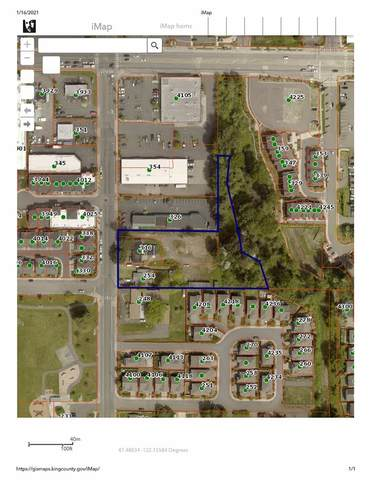 254 Union Avenue NE, Renton, WA 98059 (#1738755) :: Pacific Partners @ Greene Realty