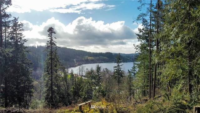 6499 Campbell Lake Road, Anacortes, WA 98221 (#1739012) :: Better Properties Real Estate