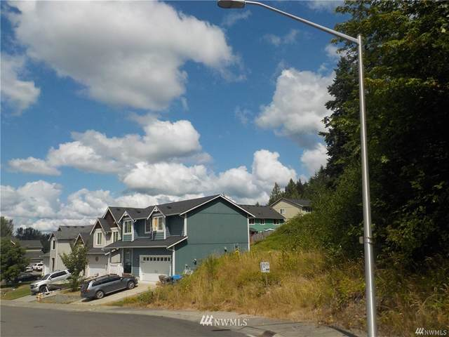 233 Skylar Way, Eatonville, WA 98328 (#1739770) :: Ben Kinney Real Estate Team