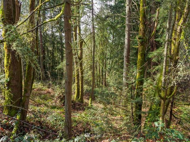 0 Lot 98 Se Mirrormont Dr, Issaquah, WA 98027 (#1740656) :: Better Properties Real Estate