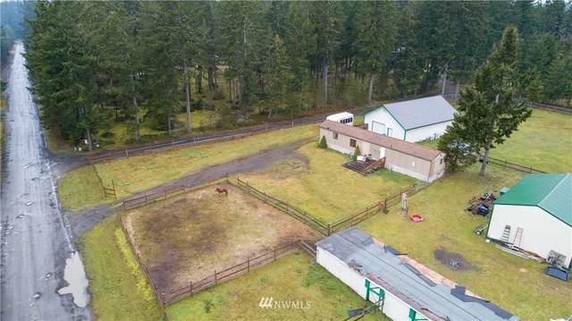 181 E Little Bear Lane, Shelton, WA 98584 (#1740682) :: Northwest Home Team Realty, LLC