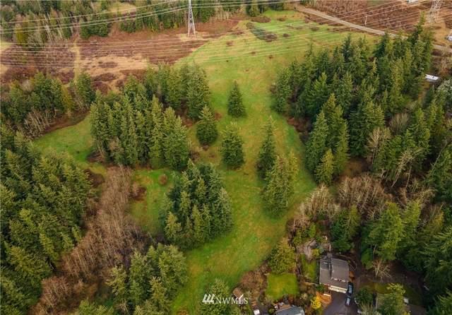 3941 Toad Lake Road, Bellingham, WA 98226 (#1741025) :: Shook Home Group