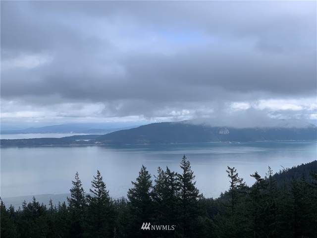 175 Genoa Lane, Orcas Island, WA 98279 (#1741849) :: Shook Home Group