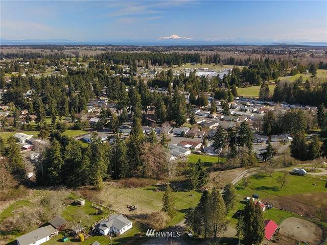 9999 Roupe Road, Sequim, WA 98382 (#1742436) :: Ben Kinney Real Estate Team