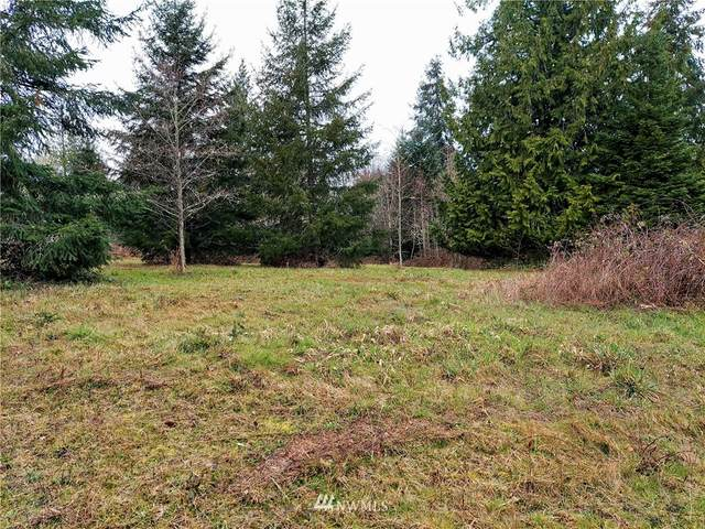 127 Saley Lane, Centralia, WA 98531 (#1742616) :: Pacific Partners @ Greene Realty