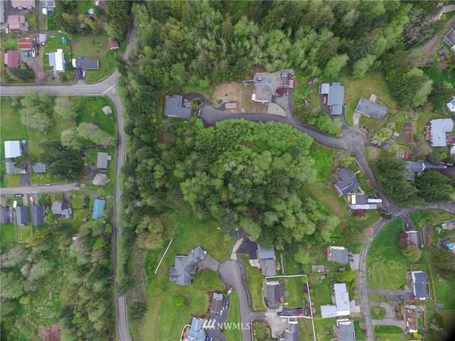 1 Dolce Lane, Elma, WA 98541 (#1743359) :: Ben Kinney Real Estate Team