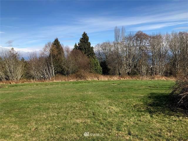 2122 Whalen Drive, Point Roberts, WA 98281 (#1743396) :: Ben Kinney Real Estate Team