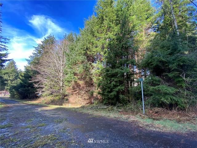 27 Elk Ridge Road, Copalis Beach, WA 98535 (MLS #1743615) :: Community Real Estate Group