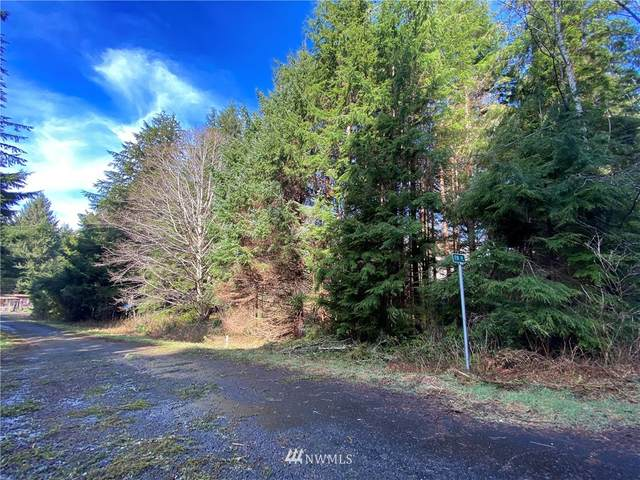 27 Elk Ridge Road, Copalis Beach, WA 98535 (#1743615) :: Northwest Home Team Realty, LLC
