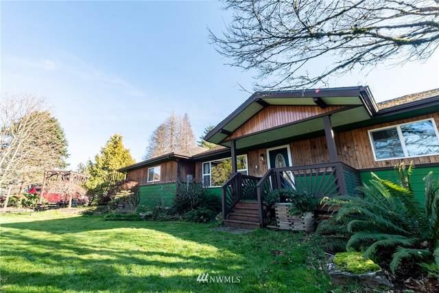 197 Camp One Road, Raymond, WA 98577 (#1743787) :: M4 Real Estate Group