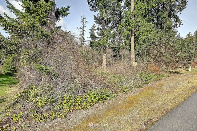 0 Tam-O-Shanter Drive, Camano Island, WA 98282 (#1743853) :: Northwest Home Team Realty, LLC