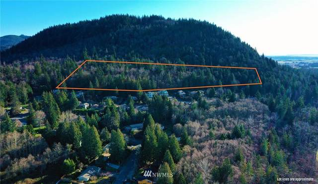 0 Cedar Hills Drive, Mount Vernon, WA 98274 (#1744045) :: Ben Kinney Real Estate Team