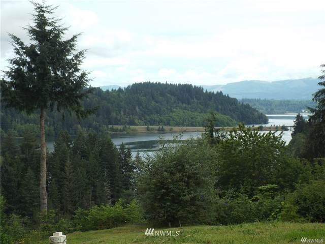 135 Island View Drive, Mossyrock, WA 98564 (#1744367) :: Costello Team