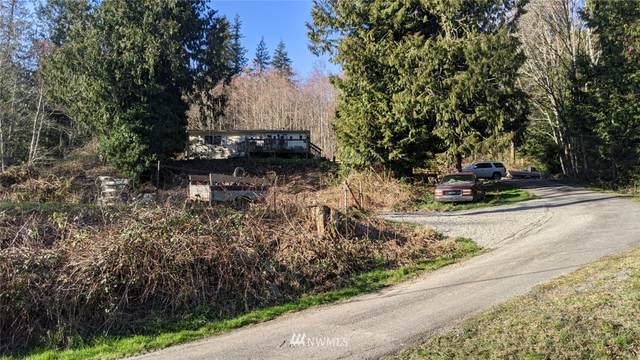 24903 Old Day Creek Road, Sedro Woolley, WA 98284 (MLS #1744639) :: Community Real Estate Group