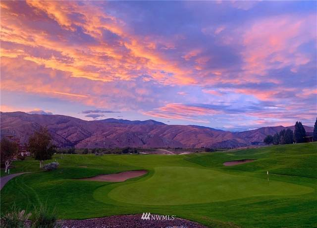 200 Desert Canyon Road, Orondo, WA 98843 (#1744798) :: Northwest Home Team Realty, LLC
