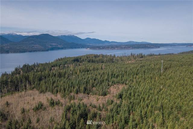 0 Mount Walker View Drive, Quilcene, WA 98376 (#1744928) :: Tribeca NW Real Estate