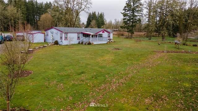 133 Twin Peaks Drive, Toledo, WA 98591 (#1745079) :: NW Home Experts