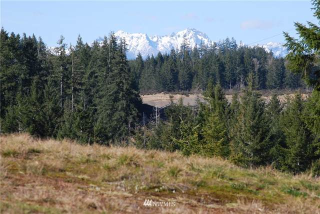 0 W Berry Ridge Road, Shelton, WA 98584 (MLS #1745286) :: Brantley Christianson Real Estate