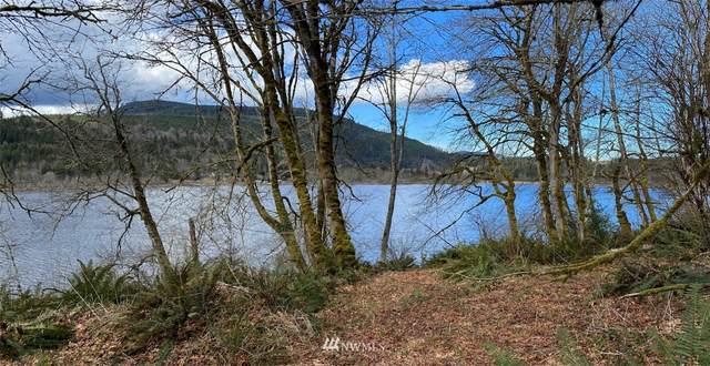821 Crocker Lake Road, Quilcene, WA 98376 (#1745659) :: Better Properties Real Estate