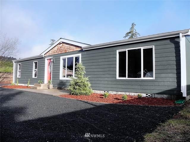 171 W Satsop Maple Glen Drive, Elma, WA 98541 (#1745955) :: TRI STAR Team | RE/MAX NW