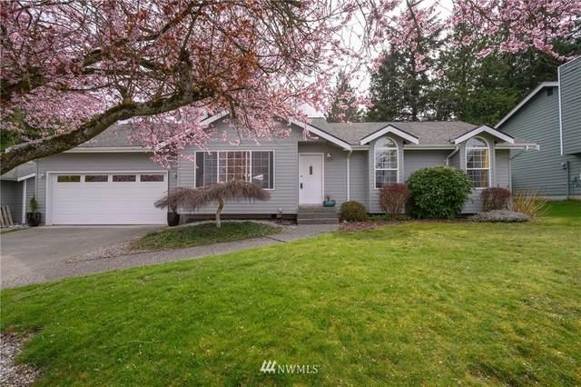 1347 Roma Road, Bellingham, WA 98226 (#1746041) :: Better Properties Real Estate