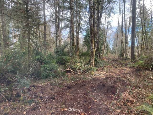 470 E Hardings Hill Road, Allyn, WA 98524 (#1746135) :: Better Homes and Gardens Real Estate McKenzie Group