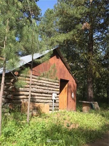18695 Badger Mountain Road, East Wenatchee, WA 98802 (#1746451) :: Ben Kinney Real Estate Team