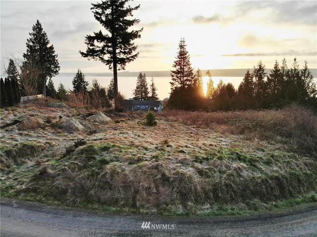 100 Lot 3 Maxview Drive, Port Ludlow, WA 98365 (#1746701) :: M4 Real Estate Group