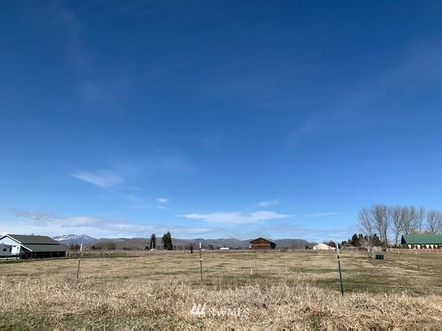 0 Bluesky Place, Omak, WA 98841 (#1747049) :: Better Properties Lacey