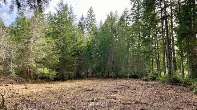 14315 175TH Avenue NW, Gig Harbor, WA 98329 (#1747171) :: Shook Home Group