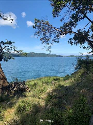 225 Sunlight Cove Road, Orcas Island, WA 98245 (MLS #1747460) :: Community Real Estate Group