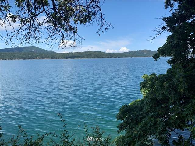200 Sunlight Cove Road, Orcas Island, WA 98245 (MLS #1747466) :: Community Real Estate Group