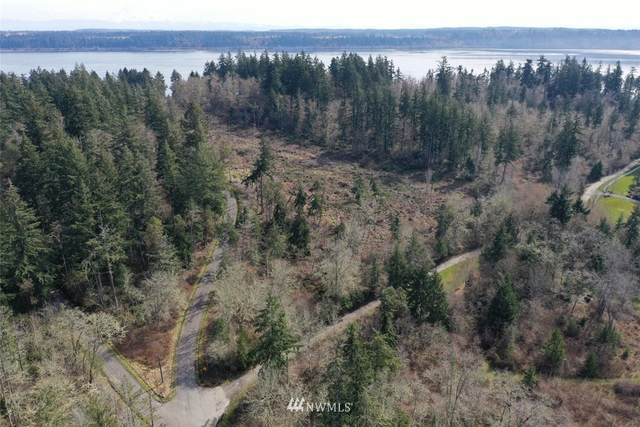 0 Agate Beach Road, Anderson Island, WA 98303 (#1747481) :: Better Properties Real Estate