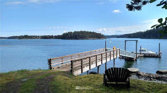 0 Little Henry, Henry Island, WA 98250 (#1747755) :: Alchemy Real Estate