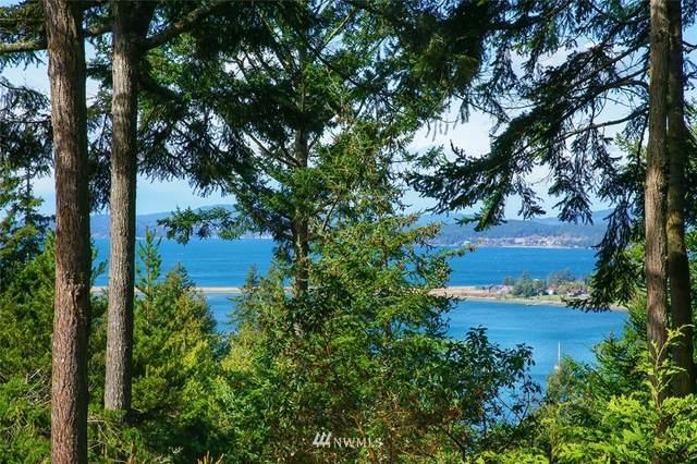 550 Whiskey Hill Road, Lopez Island, WA 98261 (#1748407) :: Urban Seattle Broker