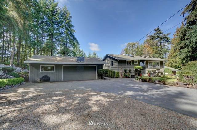 3905 161st Avenue SE, Bellevue, WA 98006 (#1748410) :: Costello Team