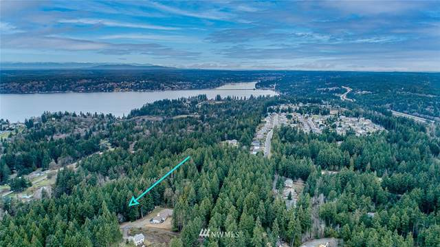 6713 103rd Street Ct NW, Gig Harbor, WA 98332 (#1748627) :: Better Homes and Gardens Real Estate McKenzie Group