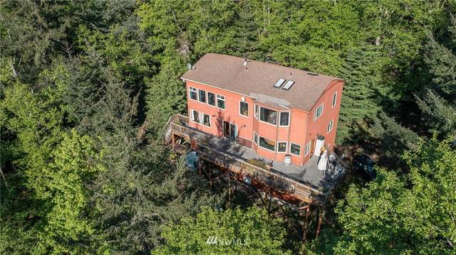 834 Buck Mountain Road, Orcas Island, WA 98245 (#1748682) :: Icon Real Estate Group
