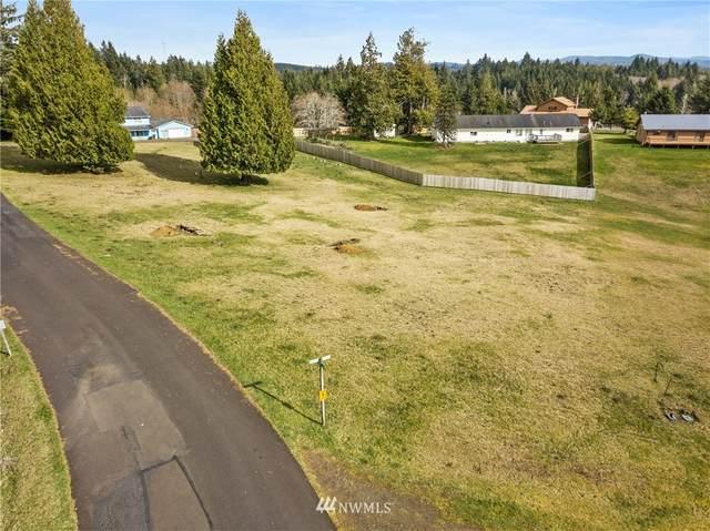65 Gunnar Lane, South Bend, WA 98586 (#1748685) :: Better Properties Real Estate