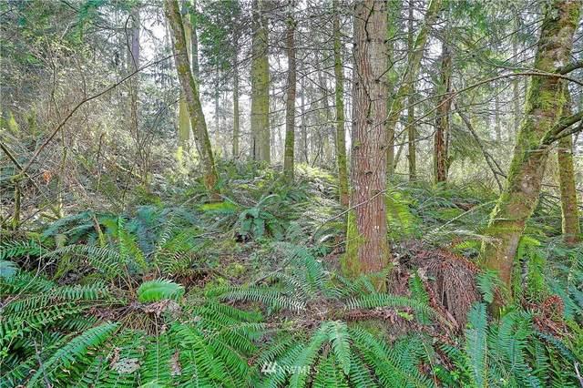 0 Amber View Place, Camano Island, WA 98282 (#1748730) :: Northwest Home Team Realty, LLC
