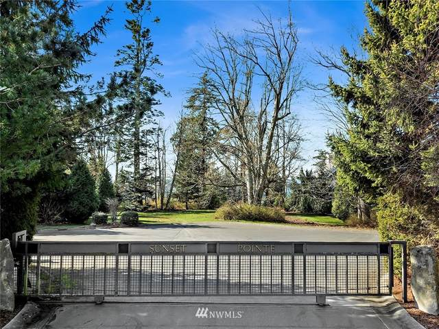8455 Point Road N, Blaine, WA 98230 (#1748993) :: Ben Kinney Real Estate Team