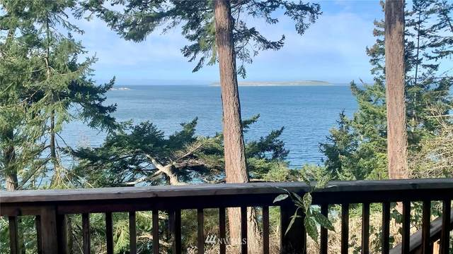 492 Beckett Point Road, Port Townsend, WA 98368 (#1749169) :: Costello Team