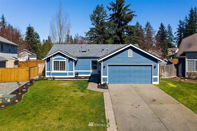 23228 SE 241st Court, Maple Valley, WA 98038 (#1749417) :: Tribeca NW Real Estate