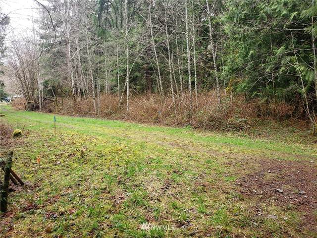 20226 251st Street NE, Arlington, WA 98223 (#1749667) :: Better Properties Real Estate