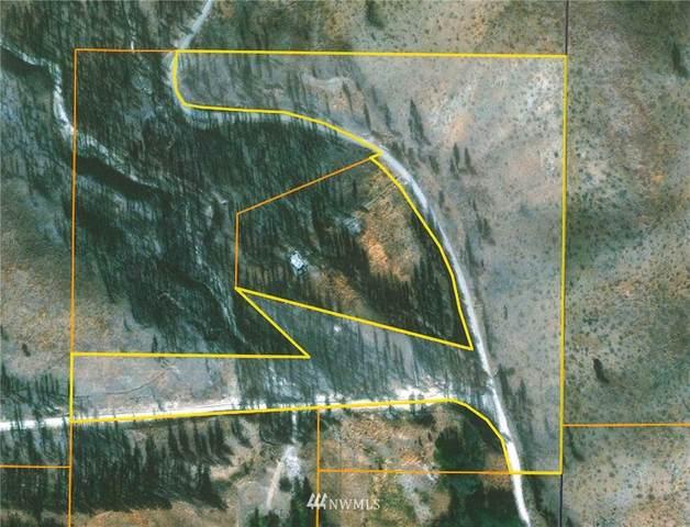 219 Hunter Mountain Road, Pateros, WA 98846 (#1749759) :: Northwest Home Team Realty, LLC