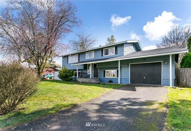 6830 Vail Drive, Lynden, WA 98264 (#1749843) :: Ben Kinney Real Estate Team