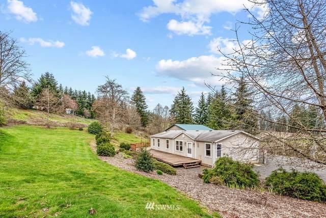 223 Flyaway Road, Castle Rock, WA 98611 (#1751016) :: Better Properties Real Estate