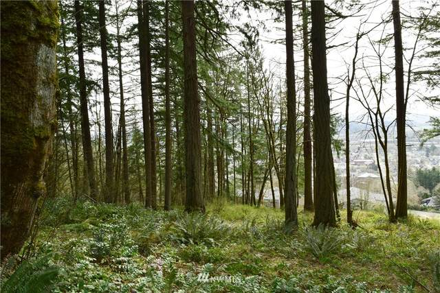 0 SE Hilltop Drive, Chehalis, WA 98532 (#1751277) :: Ben Kinney Real Estate Team
